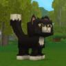CatWasTaken